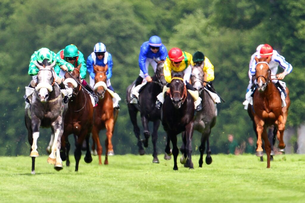 Fifth.  The Prix du Prince d'Ecouen this Saturday, October 16, 2021 in Auteuil.  – Angers info